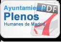 Ayuntamiento Plenos