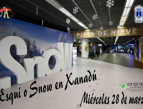"""28 de marzo, actividad de esquí o snow en el Centro Comercial """"Xanadú"""" para los jóvenes de Humanes de Madrid"""