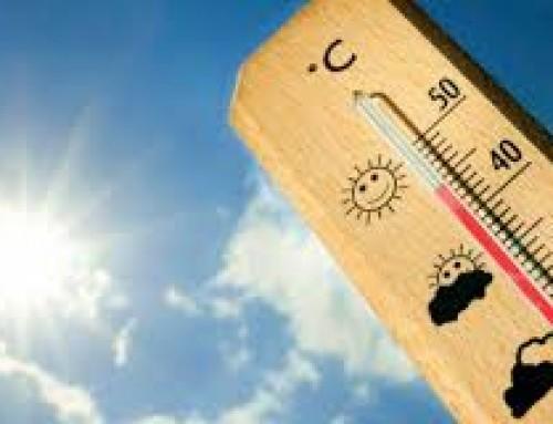 Aumenta la ola de calor en nivel 2 alto riesgo y con temperaturas máximas de 36,5 ºC para el fin de semana.