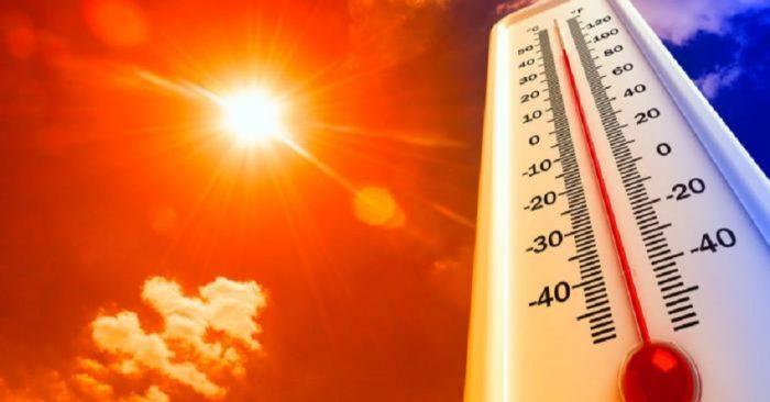 Continúa la ola de calor en nivel 2 alto riesgo y con temperaturas máximas de 39,1 ºC previstas para el miércoles.