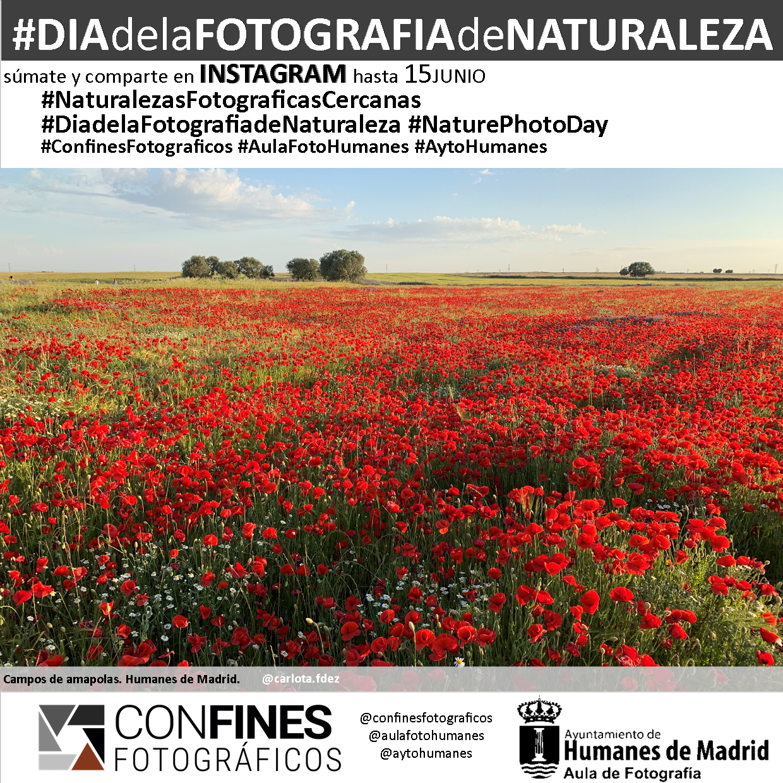 Con motivo del Día del Medio Ambiente, te invitamos a compartir fotos de naturaleza.